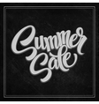 summer sale the inscription on blackboard vector image