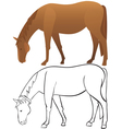 Horse outline and color vector image