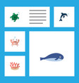 flat icon marine set of cachalot playful fish vector image vector image