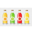 glass juice bottle with citrus label template vector image vector image