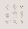 hand made floral icons nature beige vector image