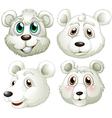Heads of polar bears vector image vector image