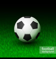realistic soccer ball on field grass vector image