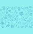 sea life animals background pattern vector image