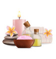 wellness and spa salon services vector image