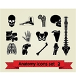 Anatomy icons set 2 vector image vector image