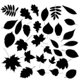Autumn Leafs Silhouettes vector image