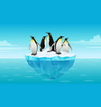 flock of emperor penguins on ice floe in cold vector image