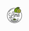 lime fruit logo round linear logo slice vector image vector image