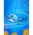 underwater dolphin vector image vector image