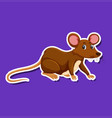 a rat sticker character vector image vector image
