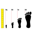 Footprint and meter vector image
