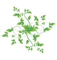 leaves in the form of abstract banner vector image vector image