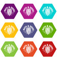 nut and seed company icons set 9 vector image vector image