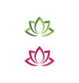 beauty lotus flowers design vector image vector image