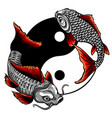 fish yin yang logo design vector image