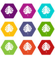 leaf of monstera icon set color hexahedron vector image vector image