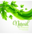 Natural background with green spring leaves vector image vector image