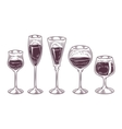 collection of wine glasses vector image