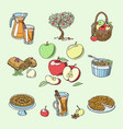 apples healthy food applepie and applejuice vector image vector image
