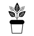 contour plant inside flowerpot to ecology vector image vector image