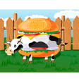 cow hamburger vector image vector image