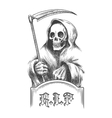 Death with a Scythe vector image vector image
