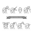 hair treatment icons set coloring care styling vector image vector image