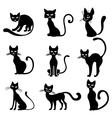 halloween cat set vector image vector image