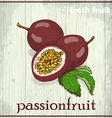 Hand drawing of passionfruit Fresh fruit sketch vector image vector image