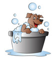 happy dog in bathtub vector image