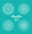 set mandala decorative and ornamental vector image