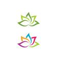 beauty lotus flowers design