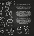 doodle cats chalkboard poster background vector image vector image