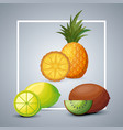 fresh pineapple with lemon and kiwi vector image vector image