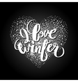 Graphic winter heart vector image