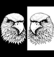 HAWK HEAD LINE vector image vector image