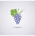 icon of blue grapes vector image vector image