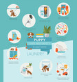 puppy care and safety in your home laundry pet vector image