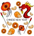 traditional symbols chinese new year vector image
