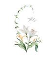 watercolor arrangement lily flowers vector image vector image