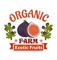 Figs Farm organic exotic fruits emblem vector image