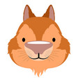 isolated cute hamster avatar vector image