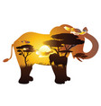 african sunset with elephant vector image
