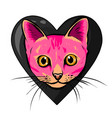 cat head cartoon style vector image