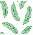 graphic seamless pattern from green leaves vector image vector image