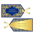 Luxury blue price tag with golden vintage pattern vector image vector image