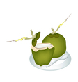 Two Green Coconuts on A White Plate vector image vector image