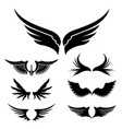 wings set design element vector image vector image