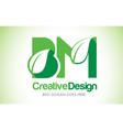 bm green leaf letter design logo eco bio leaf vector image vector image